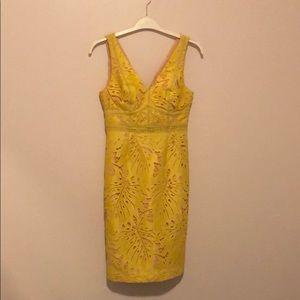 Anthropologie Maeve Gardenia Lace Dress Sz 4